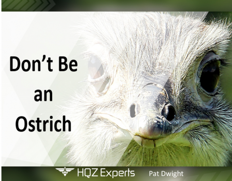 Reputation Management - Don't Be An Ostrich